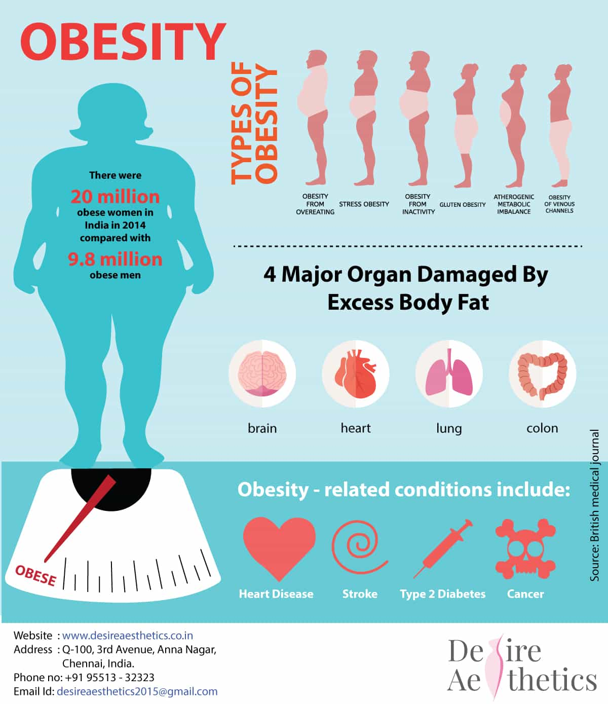 Types Of Obesity And How It Affects Your Health Desire